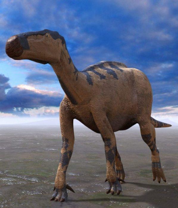 El valle de los dinosaurios: Enciso (La Rioja) 8