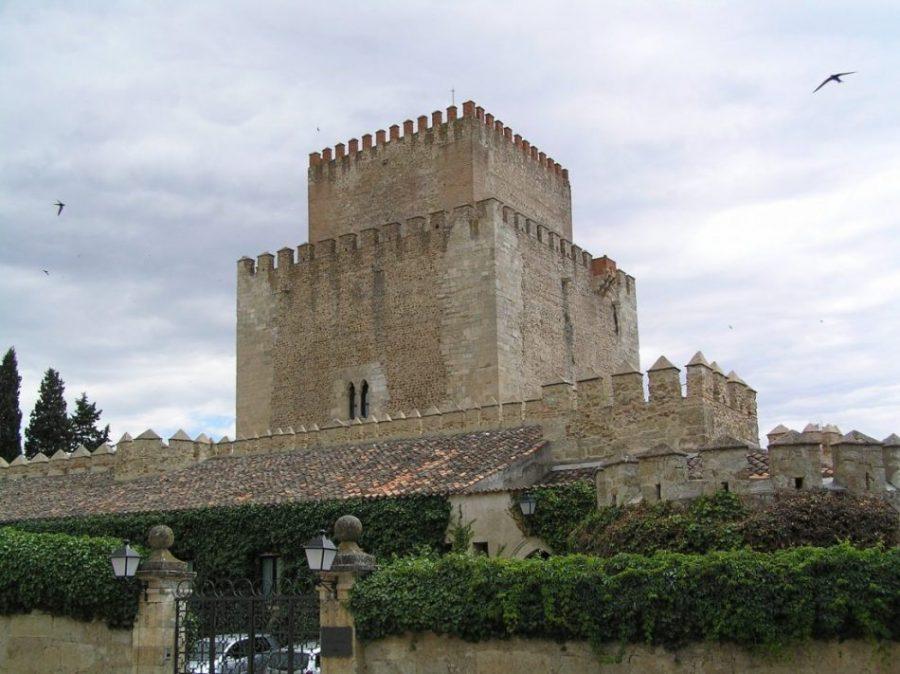 Ciudad Rodrigo: tierra de vetones y un patrimonio que fascina (Salamanca) 6