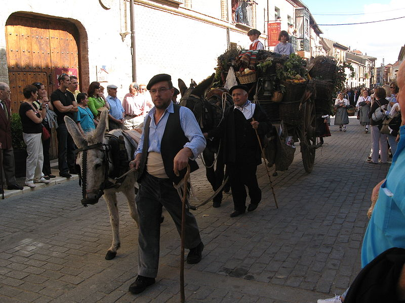 Toro, la guerra civil entre Isabel y la Beltraneja (Zamora) 10
