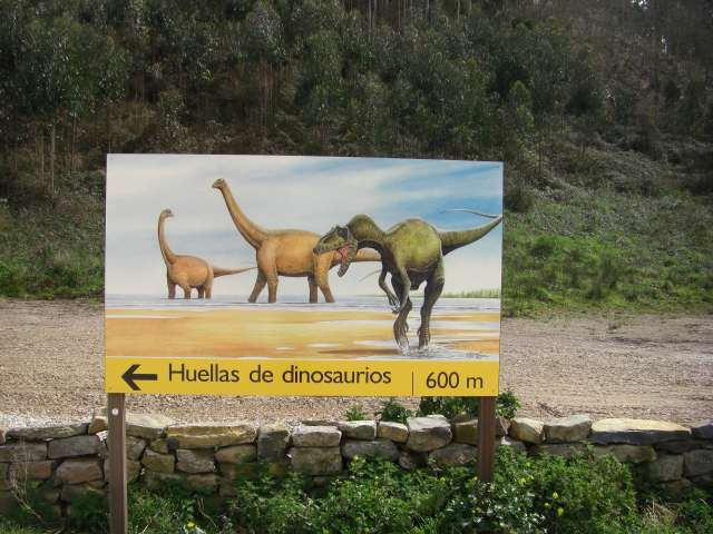 icnitas_museo_jurasico