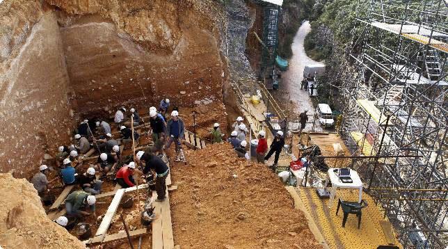 conjunto fósiles sima de los huesos atapuerca