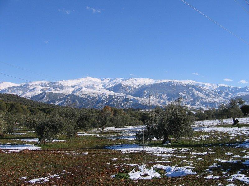 Nevada Reguera - Sierra Nevada (Granada)