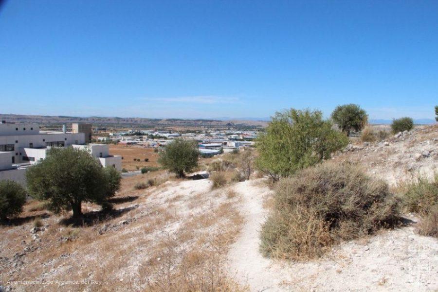 cerro_arganda