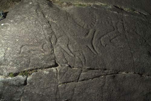 grabados rupestres campo lameiro