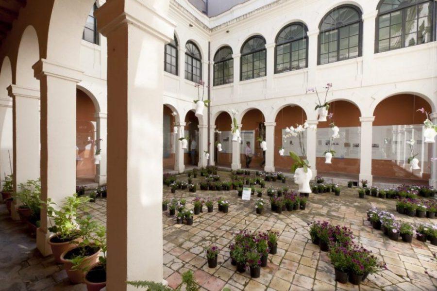 museo historia gerona - El mosaico de Can Pau Birol: una fotografía de hace 1.700 años (Gerona)